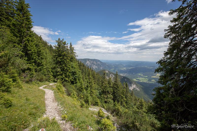 Widok w wyższej części szlaku